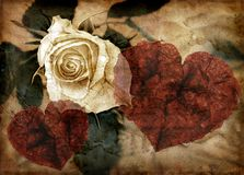Grungy hearts and rose Royalty Free Stock Photos