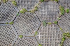 Grungy Hexagonal Tiled Seamless TGarden walkway made of hexagonal plates. Grass breaks through the slabs. Backgroundexture Stock Photography