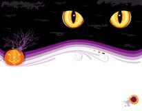 Grungy kaart van de de partijuitnodiging van Halloween Royalty-vrije Stock Afbeelding
