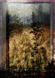 Grungy landschap Royalty-vrije Stock Foto's