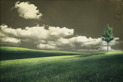 Grungy natural landscape with green hills stock image