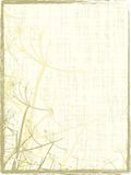 Grungy Organisch Frame Royalty-vrije Stock Afbeeldingen