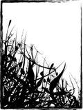 Grungy Organisch Frame stock illustratie