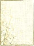 grungy organiskt för ram Arkivbild
