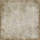 grungy paisley för bakgrund textur Royaltyfri Fotografi