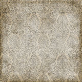 Grungy paisley texture background. A grungy paisley texture background in brown color Royalty Free Stock Photography