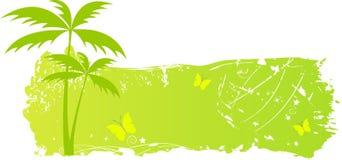 grungy palmträd för banerfjärilar Royaltyfri Foto