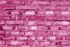 Grungy pink toned house wall. Grungy pink toned brick house wall. Abstract background and textures for design Royalty Free Stock Photo
