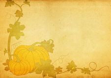 Grungy pumpkin & foliage frame Stock Photos