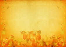 Grungy pumpkin & foliage frame Stock Photography