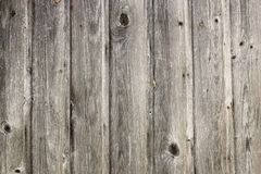 Grungy real spruce planks texture Stock Image