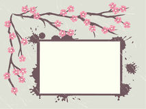 Grungy retro background with sakura branch Royalty Free Stock Images