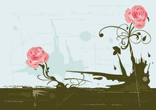Grungy roses Stock Photography