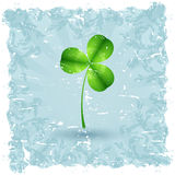 Grungy Saint Patrick's Day Card with Shamrock Stock Images