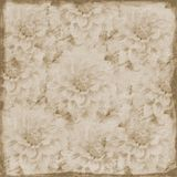 Grungy sepia large floral background Stock Image