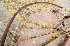 Grungy stairs Royalty Free Stock Image