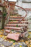 Grungy stairs outdoors Royalty Free Stock Photo