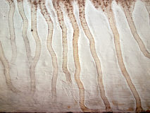 Grungy texture with water stain. Abstract Stock Images