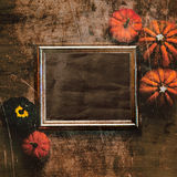 Grungy textured halloween frame with pumpkins Stock Image