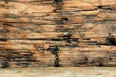 grungy texturträ Arkivbilder