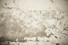 grungy texturvägg Royaltyfri Foto