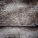 grungy texturvägg Royaltyfri Bild