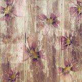 Grungy textuur van het bloem houten patroon stock illustratie