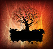 Grungy tree banner Royalty Free Stock Photography