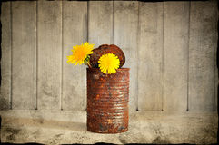Grungy vase Stock Photography