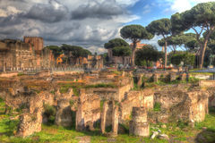 Grungy vintage picture of ruined Roman market in Rome Royalty Free Stock Image