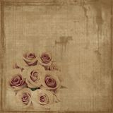Grungy vintage roses on canvas. Grungy sepia vintage bunched roses on canvas Royalty Free Stock Images