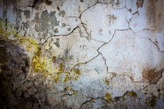 Grungy wall texture background Royalty Free Stock Image