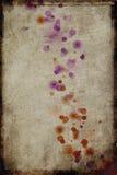 Grungy vlekken vector illustratie