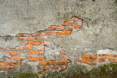 Grungy wall Stock Image