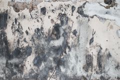 Grungy wall II royalty free stock image
