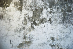 Grungy wall texture Royalty Free Stock Photos