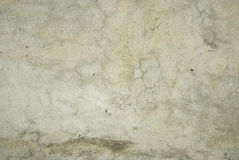 Grungy wall texture Royalty Free Stock Image
