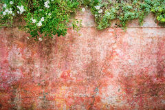 Grungy wall texture with flowers on edges. Grungy wall texture with flower decorations on edges Royalty Free Stock Photo