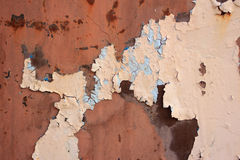 Grungy wall texture Royalty Free Stock Photo