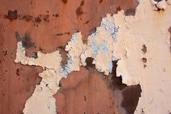 Grungy wall texture Royalty Free Stock Photo