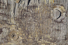 Grungy Wood Background Texture. Closeup of Grungy Wood Background Texture Royalty Free Stock Image