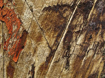 Grungy Wood Texture Royalty Free Stock Image