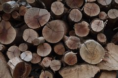 Grungy wood texture stock photography