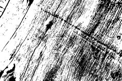 Grungy wooden texture. Rough timber black and white texture. Weathered hardwood surface. stock illustration