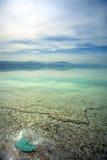 Det grunda döda havet bevattnar Arkivfoton