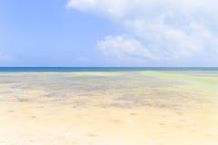 Grunt blått vatten Arkivbild