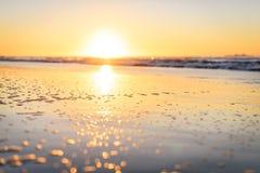 Grunt djup av fältsolnedgången med havet och strand bokad effekt Arkivbild