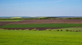 Grunt orny i zielonej trawy pola na jasnym niebieskim niebie Panorama krajobraz zielone łąki zdjęcia royalty free