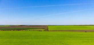 Grunt orny i zielonej trawy pola na jasnym niebieskim niebie Panorama krajobraz zielone łąki obraz royalty free