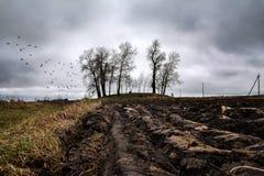 Grunt orny na chmurnym dniu w opóźnionej jesieni obraz stock